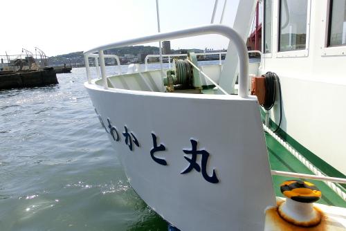 CIMG0410wakato1204.jpg