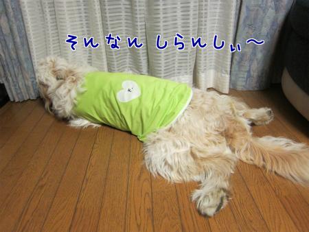 FTgDZYPXDF5AHYP.jpg