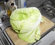 白菜一個だ2012