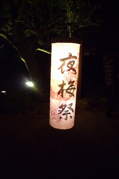 夜梅祭2013