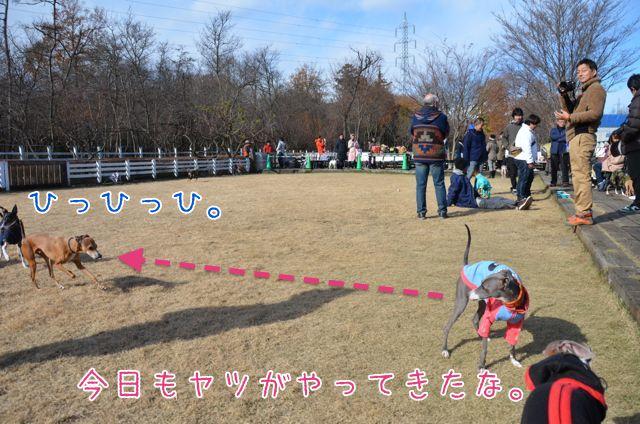 2DSC_5218.jpg
