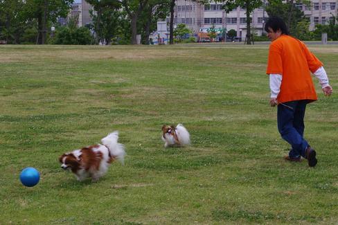 2012.5.20香椎浜オフ会 161
