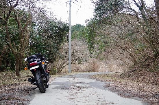 県道177号線 1