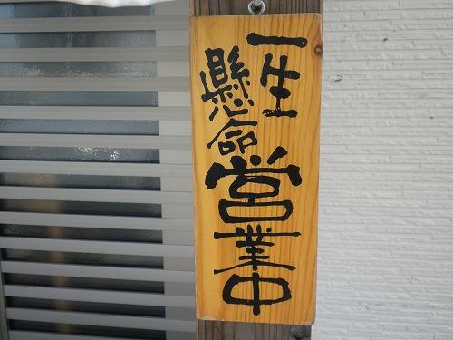 hatsune02.jpg