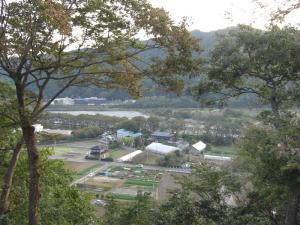相模川を見下ろす風景