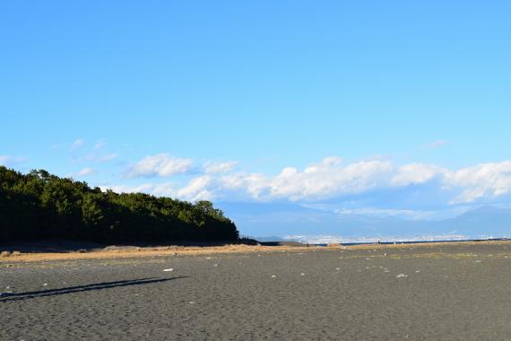 三保松原 富士山 その3