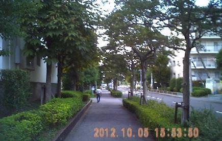201210051553風景
