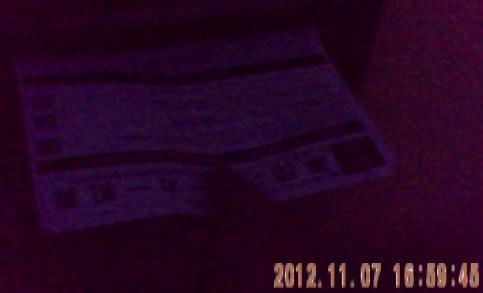 201211071659ポスティング