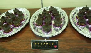 福岡シティリビングスイーツイベント428