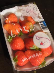 三越桜ももいちご1 (2)