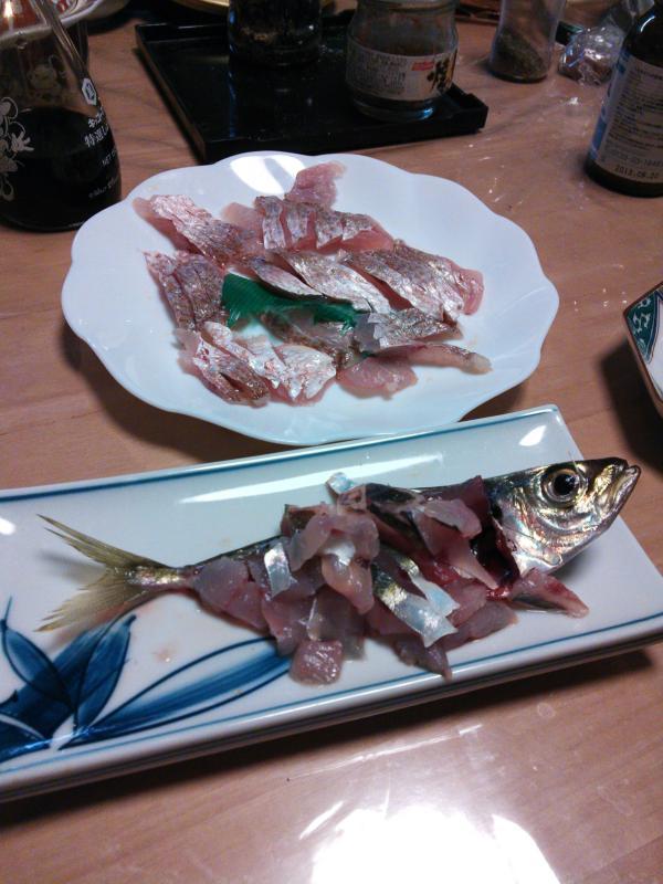 20130104鯛釣り4
