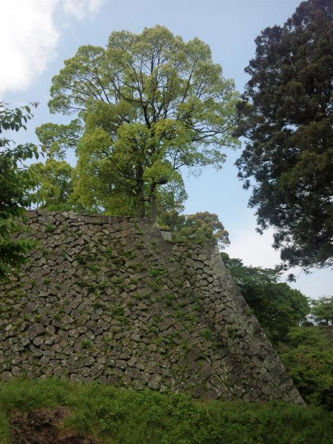 本丸の絶壁