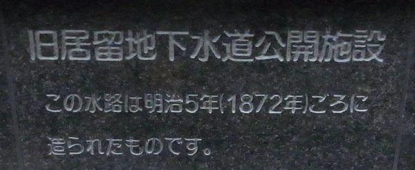 1262917k.jpg