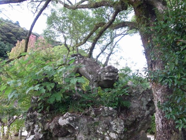 吉香神社8