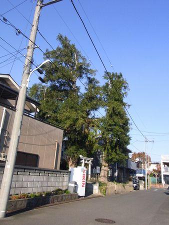 とうかんの森2
