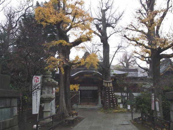 素盞雄神社3