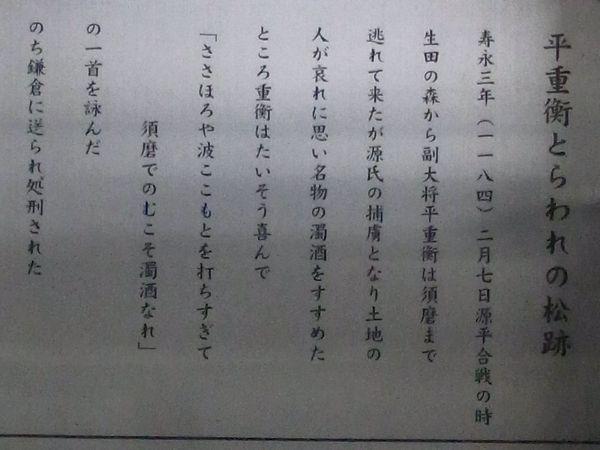 a12070134.jpg