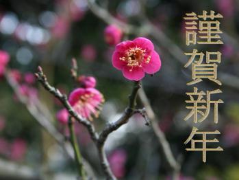 新春のご挨拶 梅