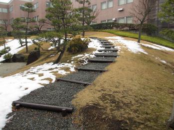 春の雪はすぐ溶ける