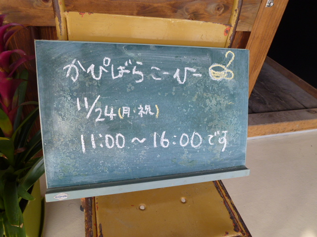 P1180465.jpg