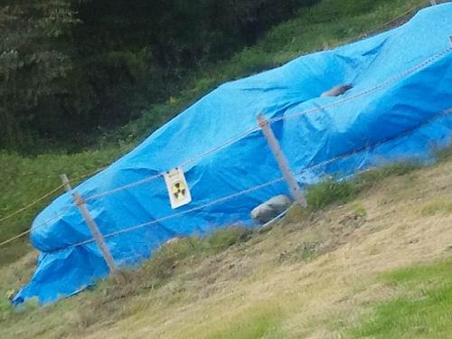 栃木県畜産酪農研究センター[<放射性汚染対策><バイオガスプラント>現地調査]②
