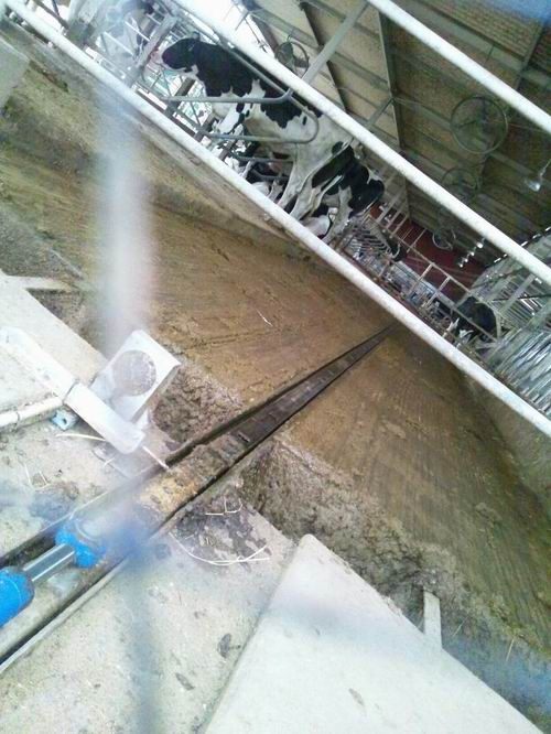 栃木県畜産酪農研究センター[<放射性汚染対策><バイオガスプラント>現地調査]③