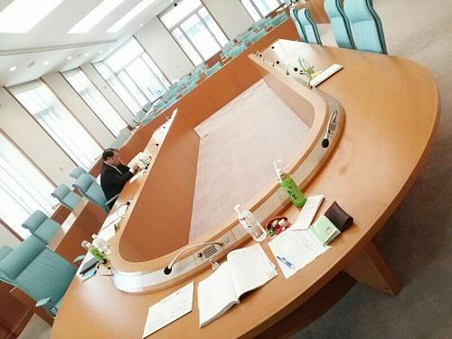 栃木県平成25年度当初予算編成に伴うヒアリングその1