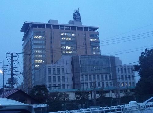 平成25年栃木県議会定例会<第317回通常会議>本会議 採決
