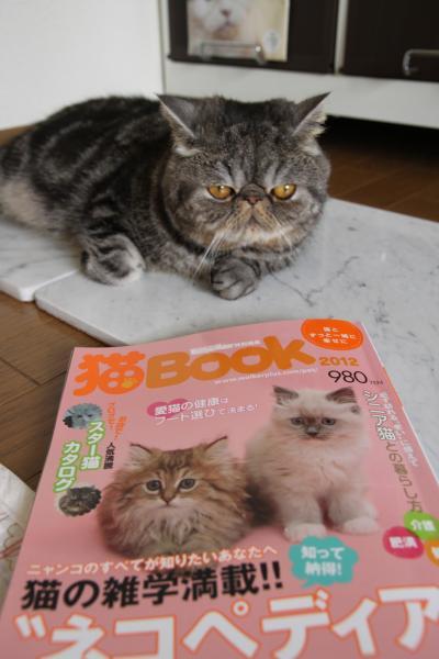 猫BOOK1