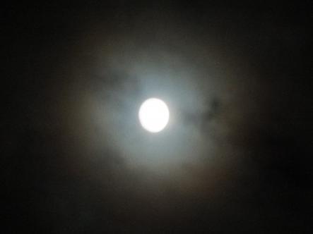 2012-10-27+(27)_convert_20121028015113.jpg
