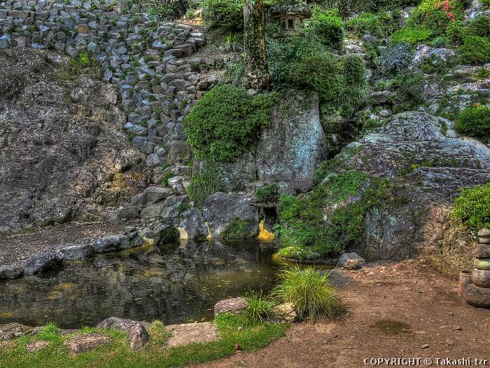 臨済寺庭園