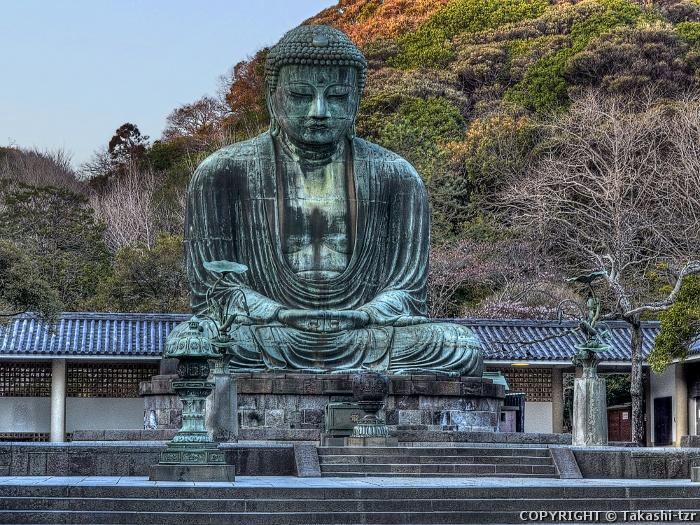 鎌倉大仏殿跡