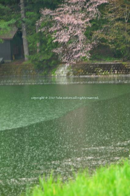 2012・5・16雨2