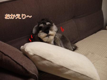 10_24+002_convert_20121025164705.jpg