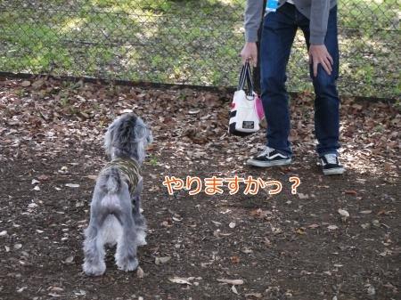 10_27+056_convert_20121027234857.jpg