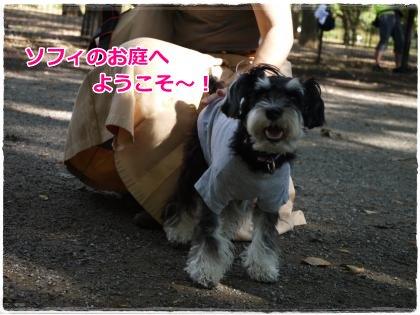 10_5+042_convert_20121006193912.jpg