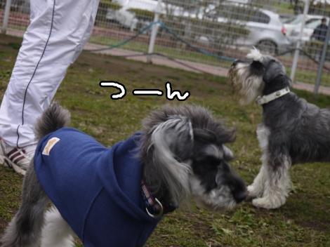 11_11+044_convert_20121112001251.jpg