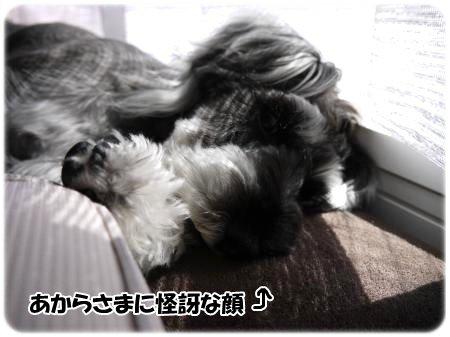 4_27+003_convert_201204271839452.jpg