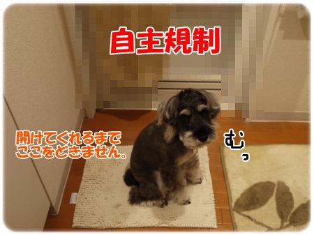 4_27+014_convert_20120427184201.jpg