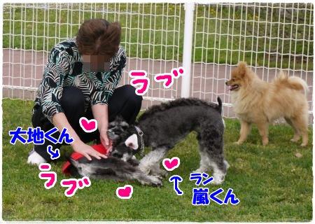 4_29+030_convert_20120430000636.jpg
