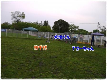 4_29+119_convert_20120430001318.jpg