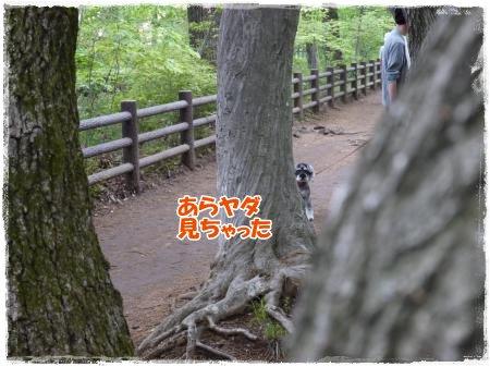 4_30+011_convert_20120501005053.jpg