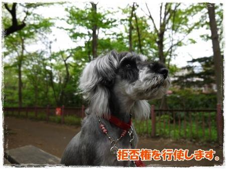 4_30+022_convert_20120501005323.jpg