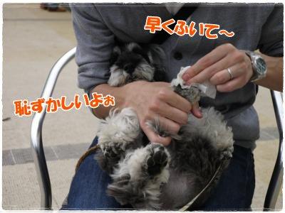 4_30+112_convert_20120501123749.jpg