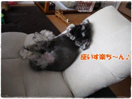5_10+004_convert_20120510183617.jpg