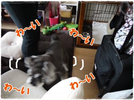 5_11+001_convert_20120511180751.jpg