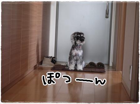 5_11+020_convert_20120511181150.jpg
