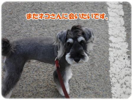 5_15+028_convert_20120515183546.jpg