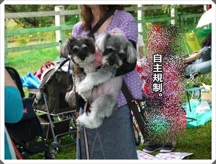 5_28+079_convert_20120530121937.jpg