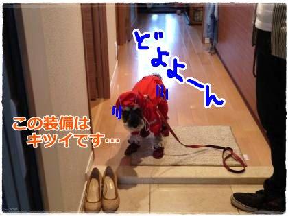 6_10+001_convert_20120610185037.jpg